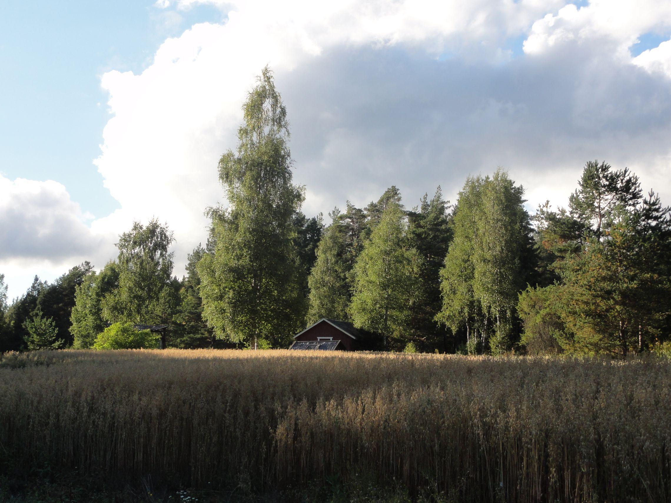 20160820 Rauma 35