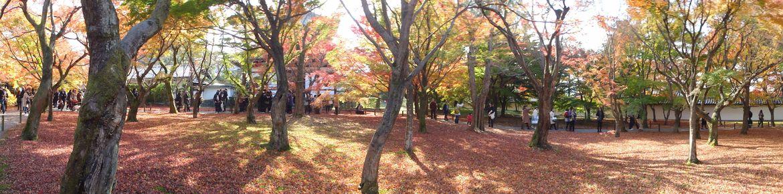 20161124 Kyoto 05