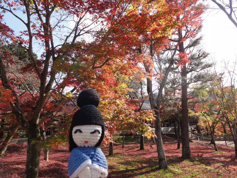 20161124 Kyoto 09