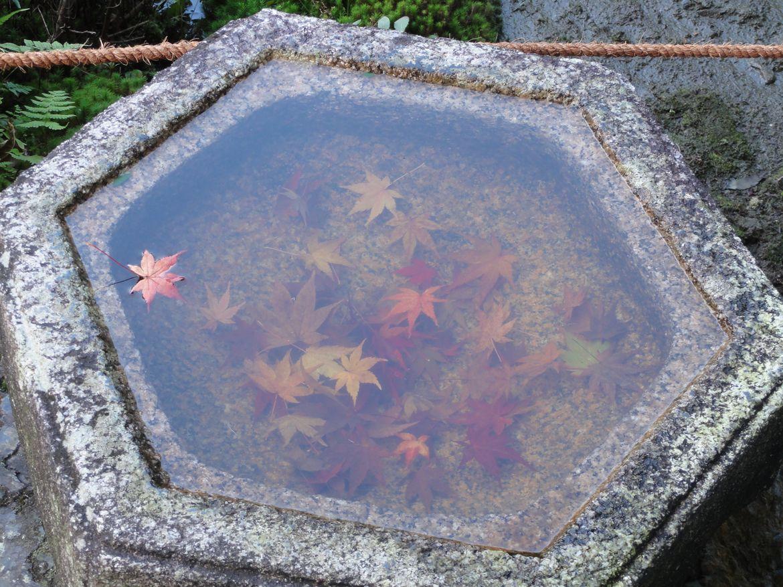 20161124 Kyoto 11