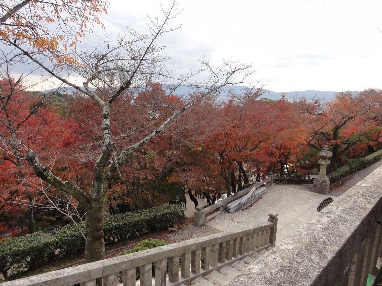 20161124 Kyoto 17