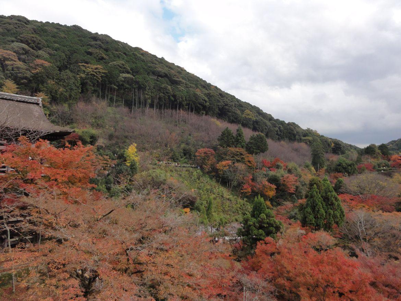 20161124 Kyoto 18