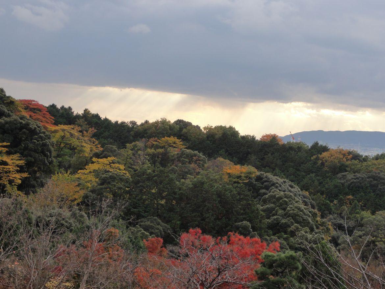20161124 Kyoto 20