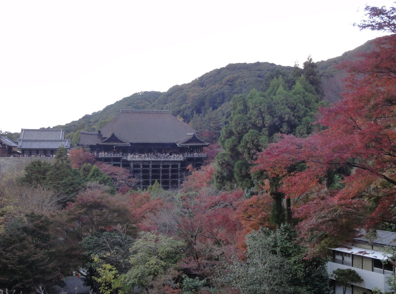 20161124 Kyoto 26