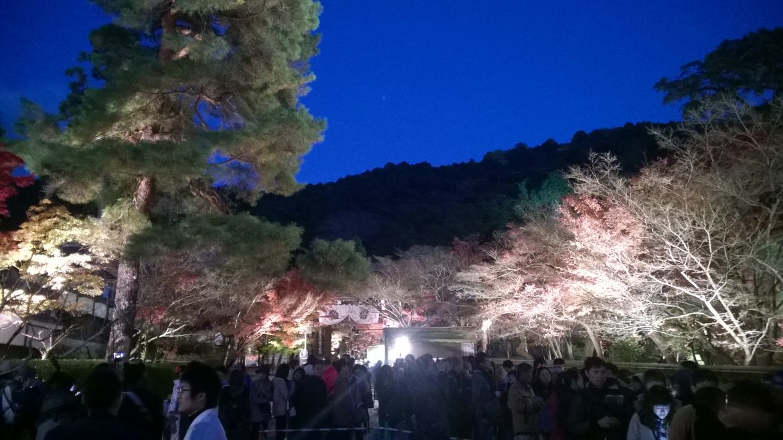 20161124 Kyoto 34