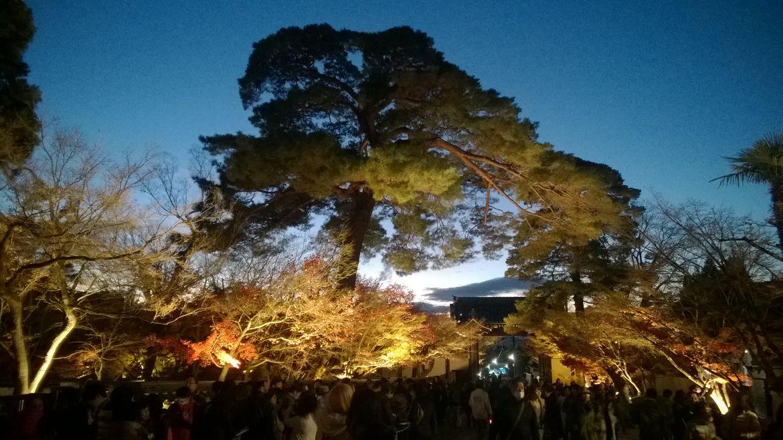 20161124 Kyoto 35