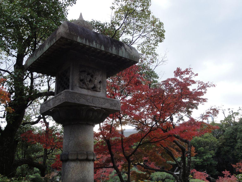 20161128 Jardin Kobe 05