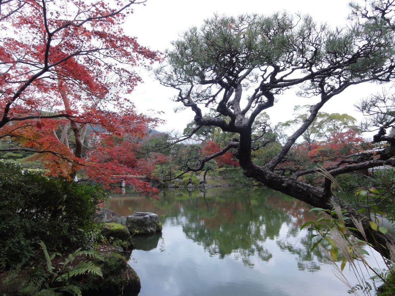 20161128 Jardin Kobe 11