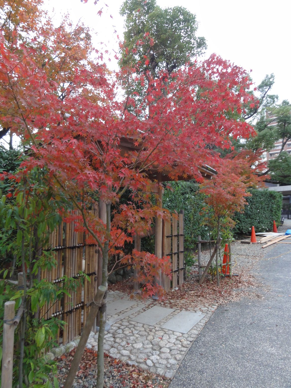 20161128 Jardin Kobe 13