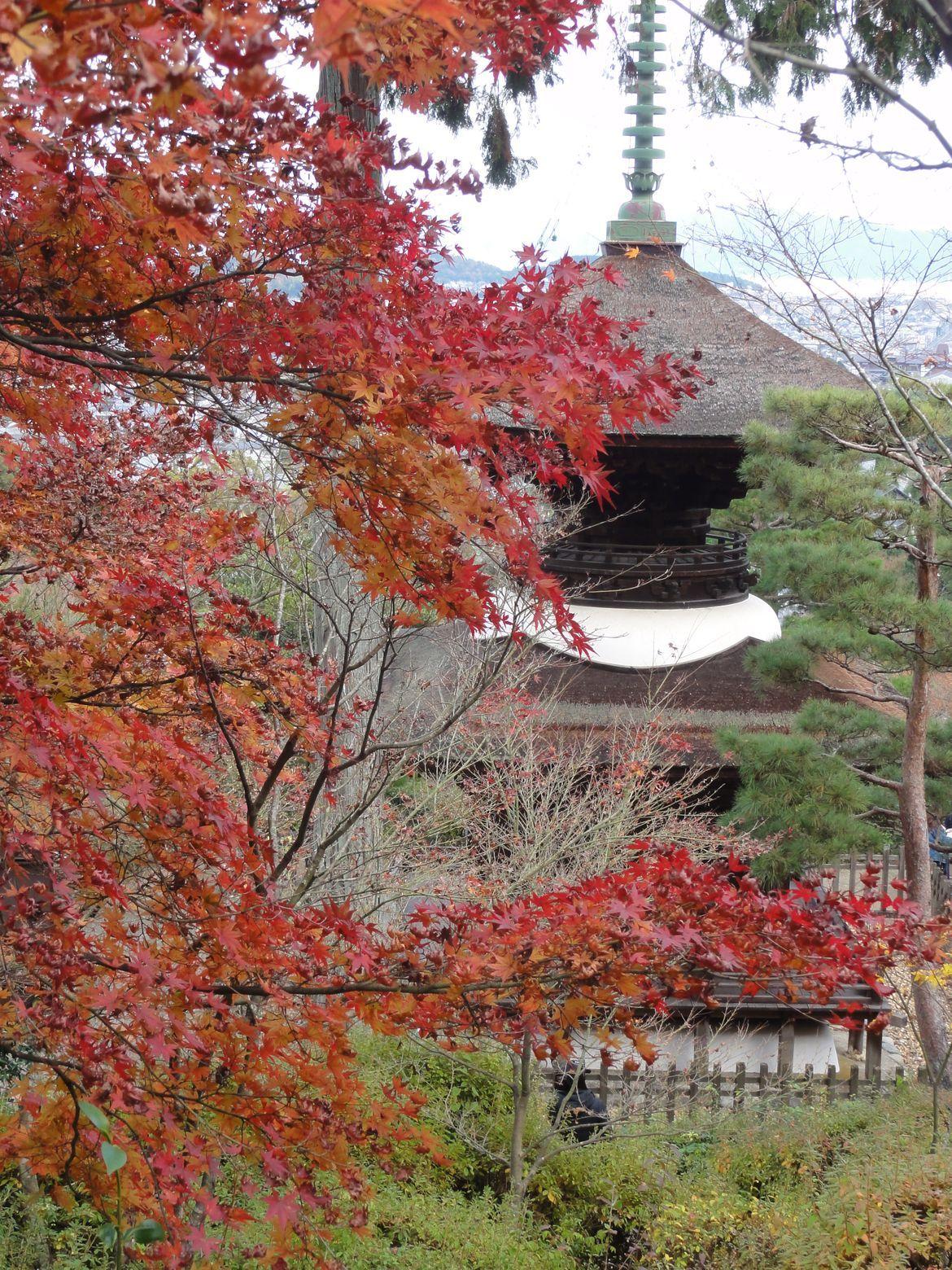 20161129 Arashiyama 11