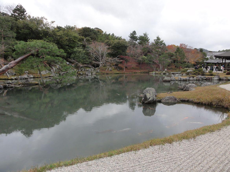 20161129 Arashiyama 16