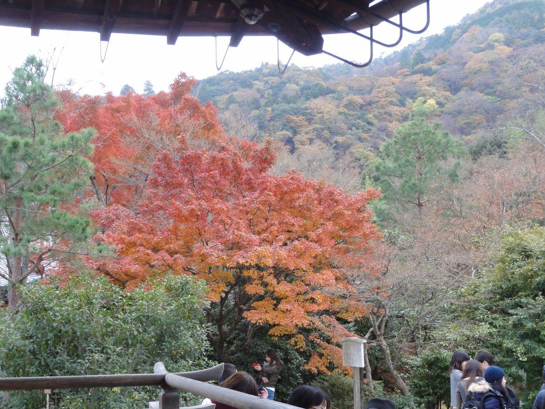 20161129 Arashiyama 20