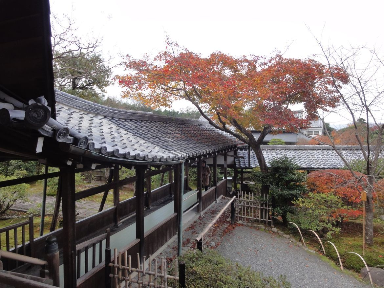 20161129 Arashiyama 22