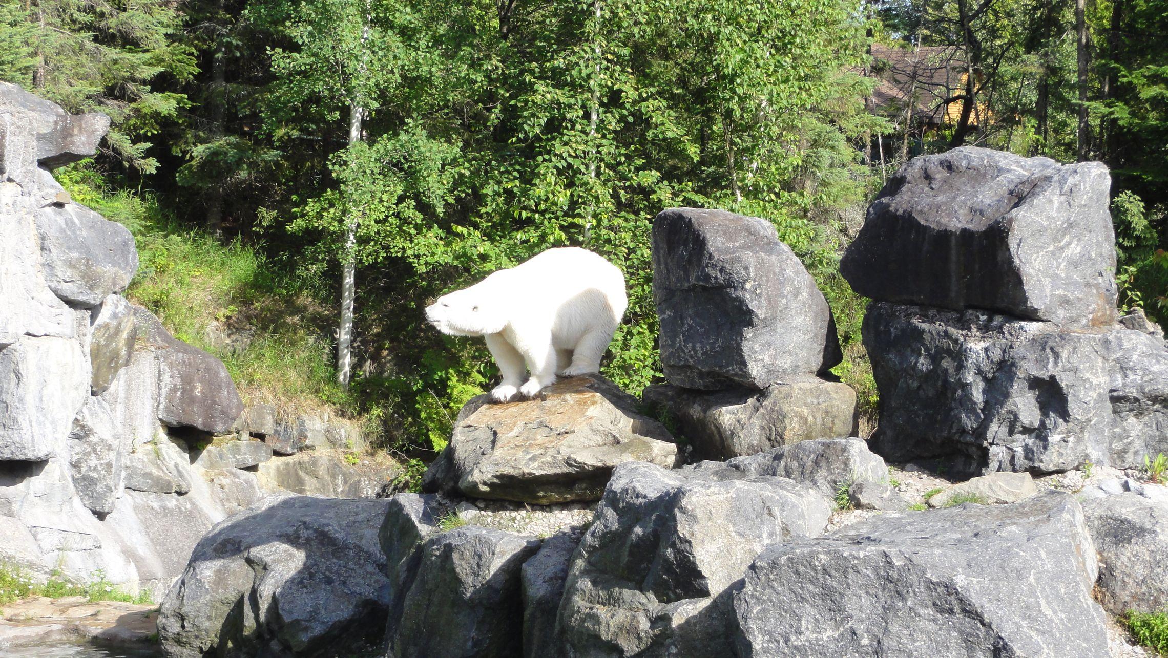 20170724 Zoo Saint Fabien 22