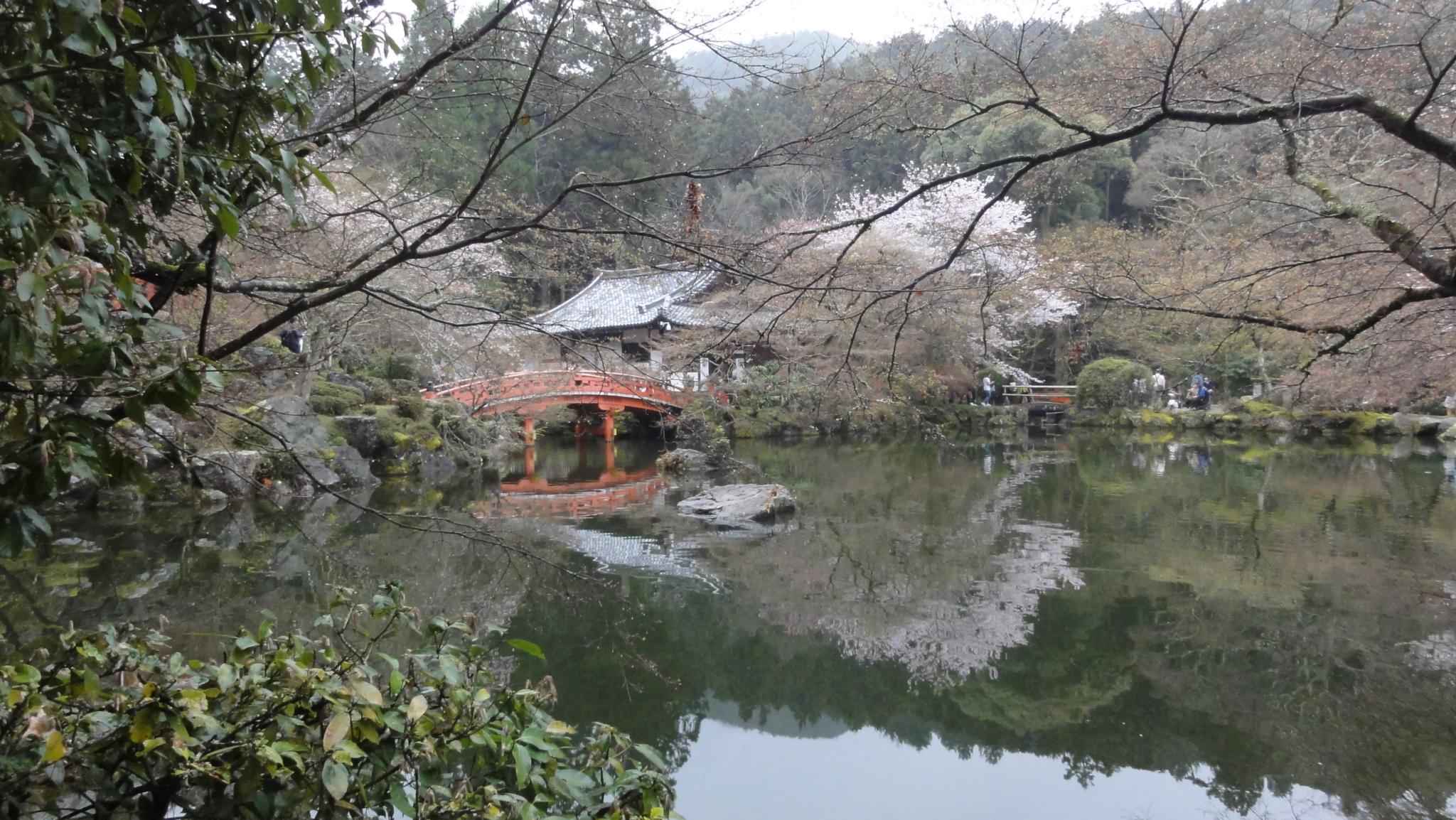 20170408 Daigoji Kyoto 23
