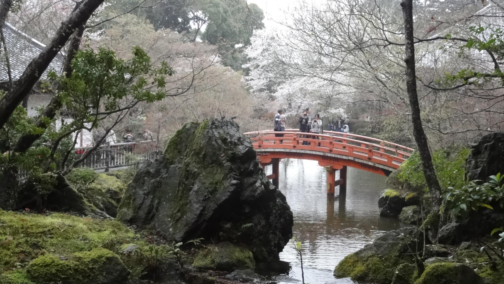 20170408 Daigoji Kyoto 24