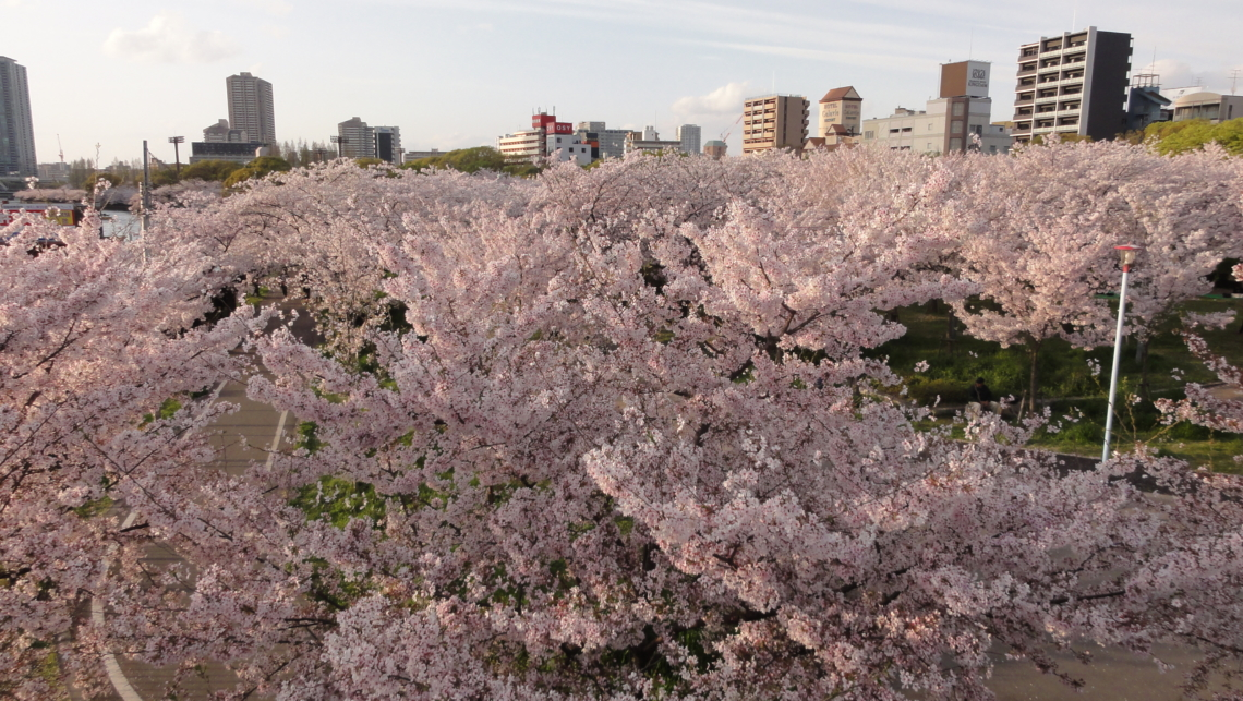 20170412 Osaka 07
