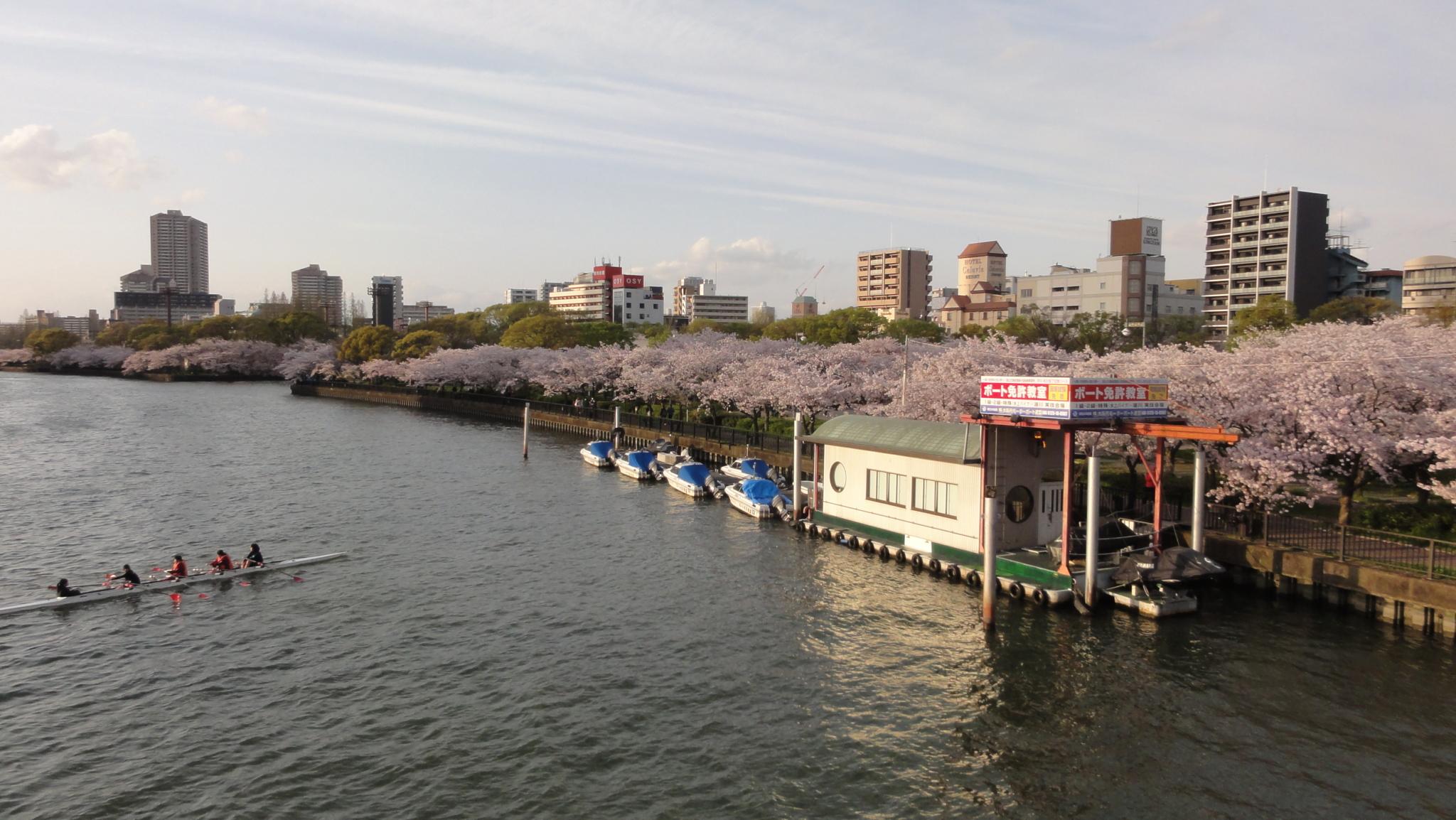 20170412 Osaka 09