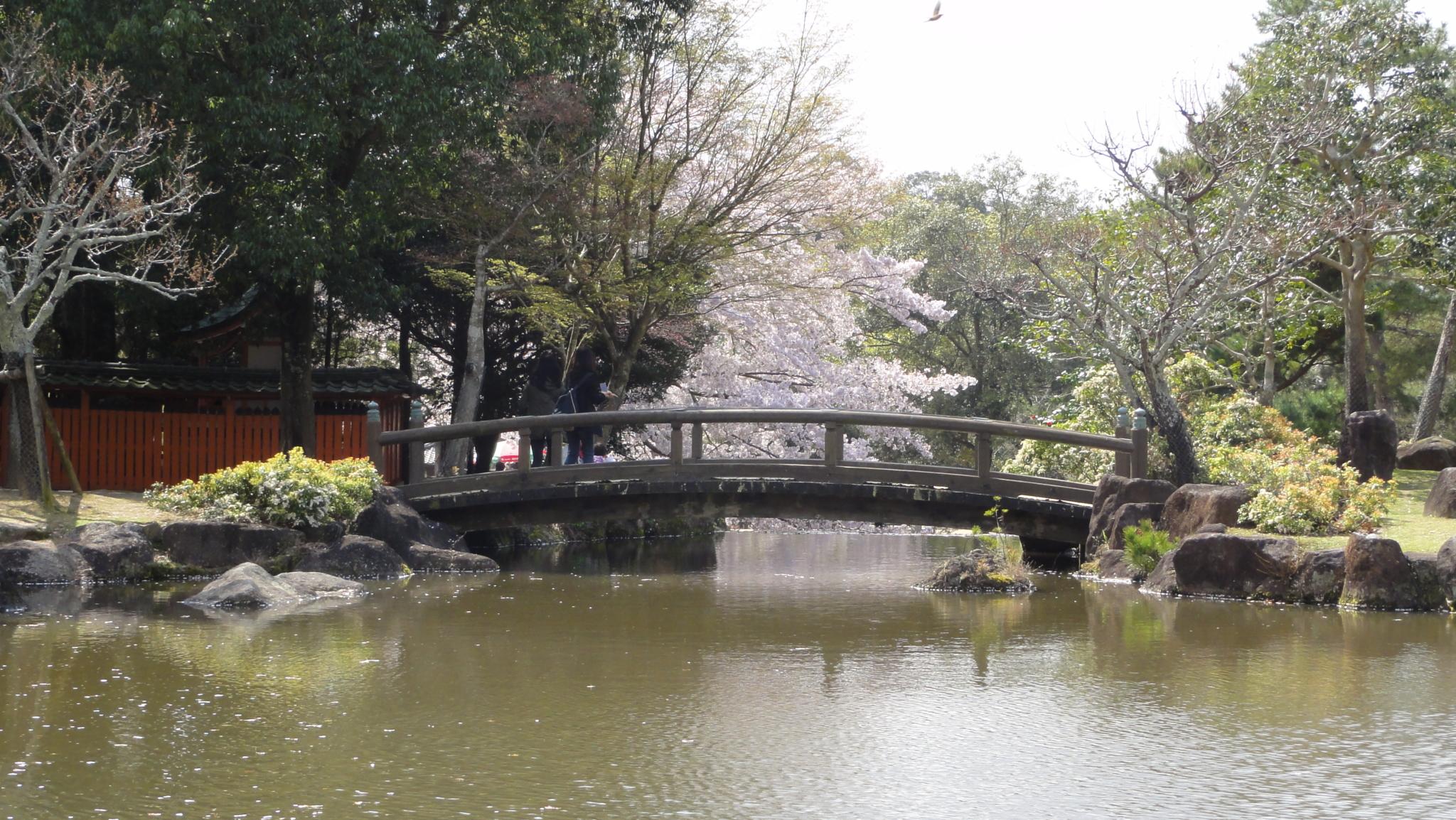 20170413 Nara 22