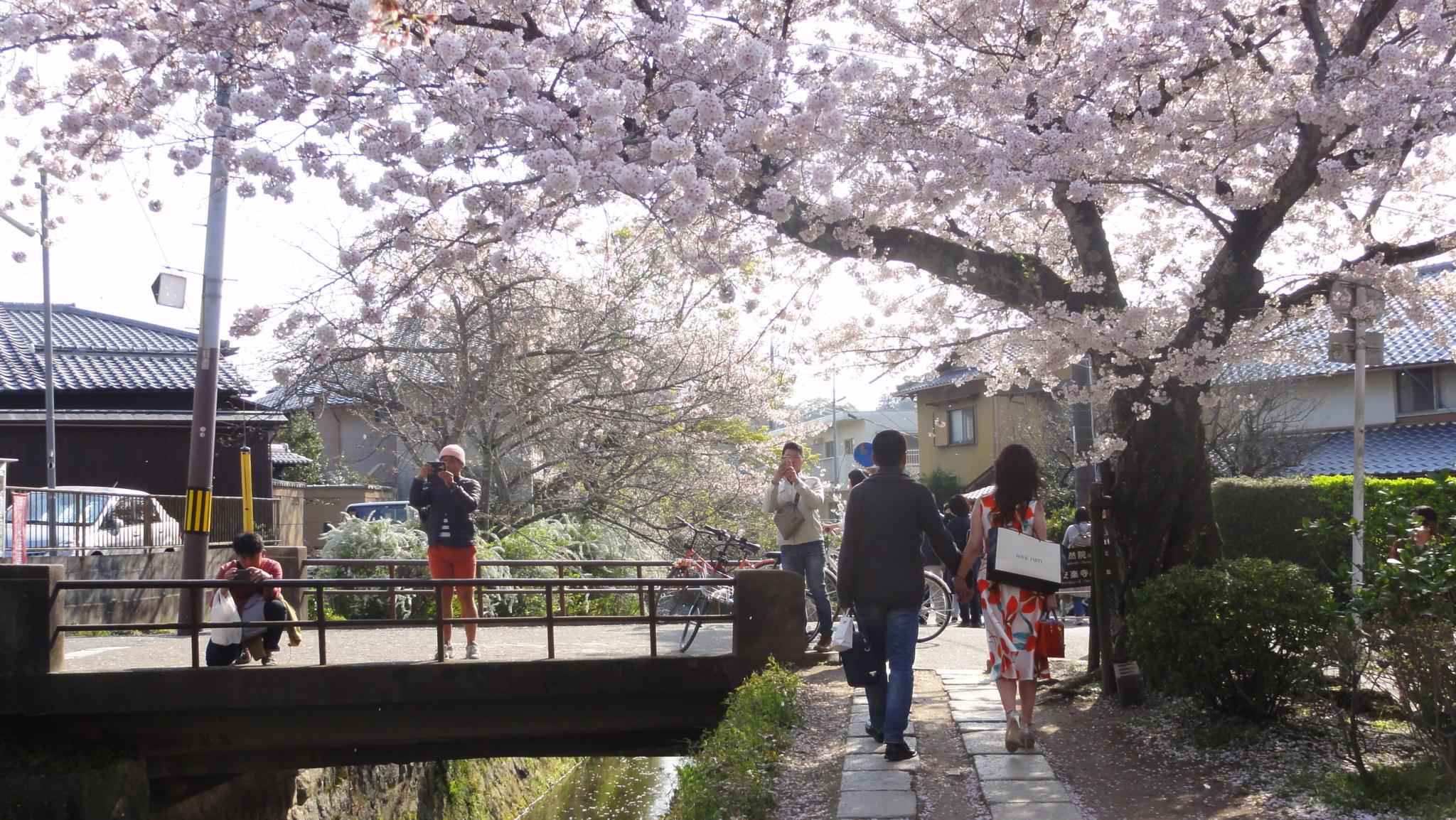 20170414 Kyoto 11