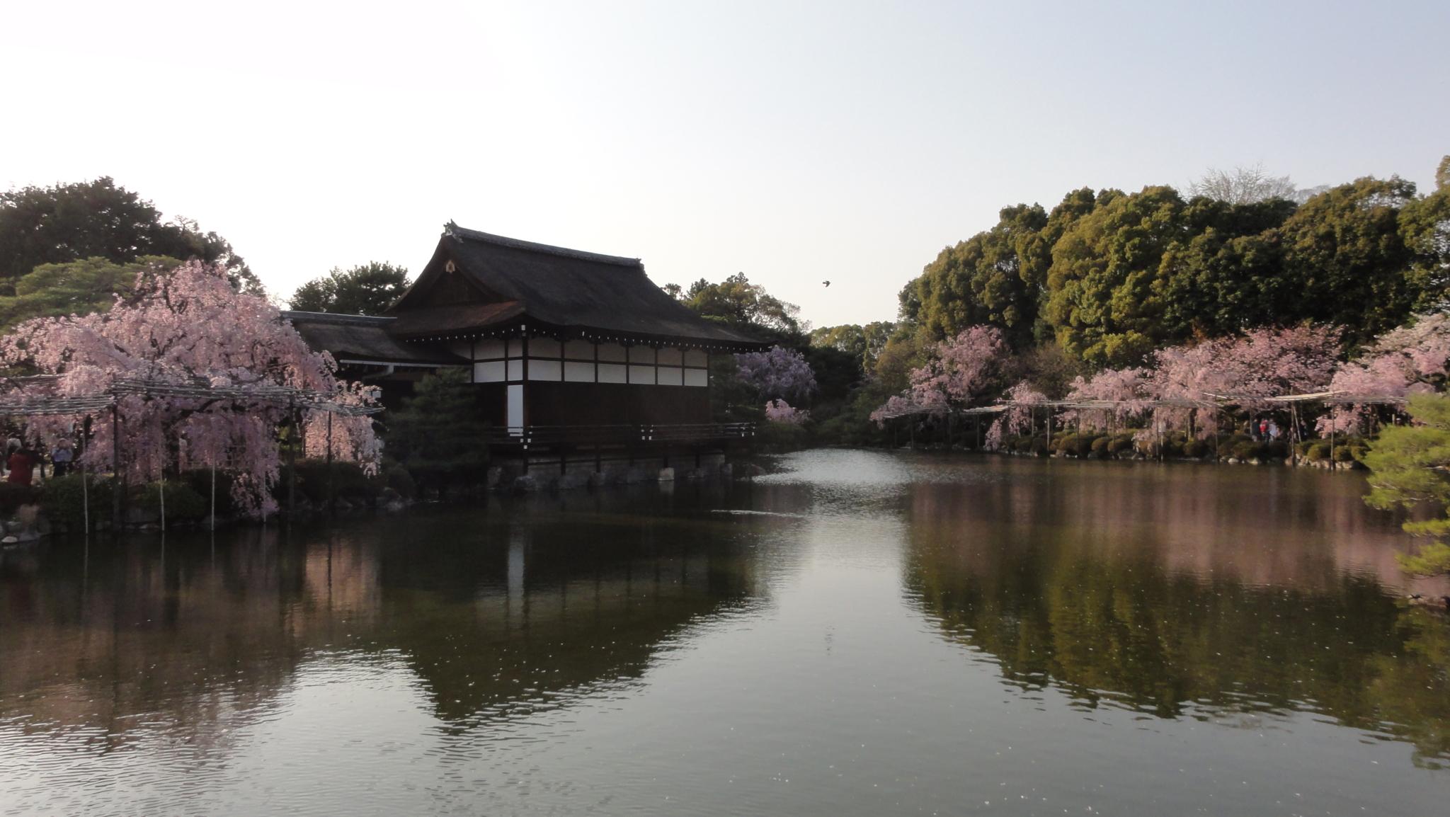 20170414 Kyoto 19