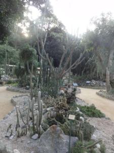 2019 06 19 Jardin botanique 25