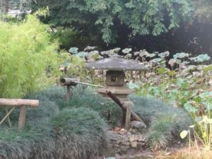 2019 06 19 Jardin botanique 38