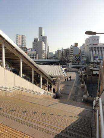 2020 02 24 Tokyo Ueno 10