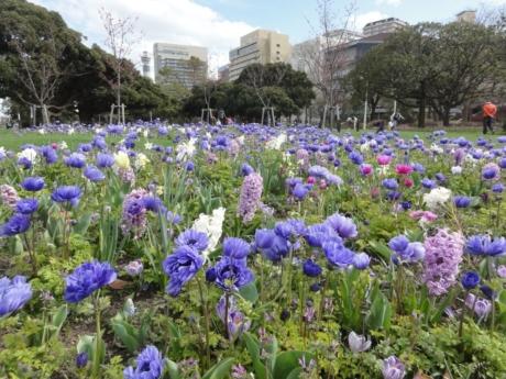 2020 03 17 Yokohama 12