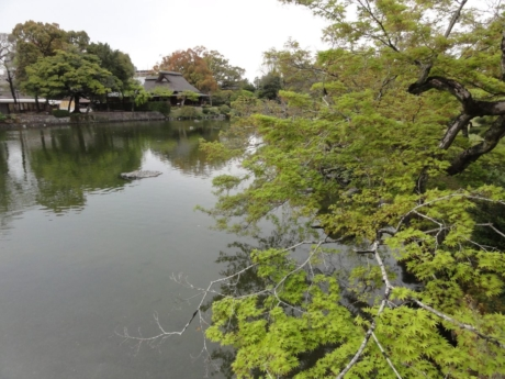 2020 03 29 Kumamoto 47