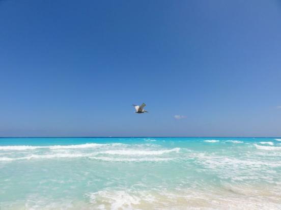 20110324 cancun 03