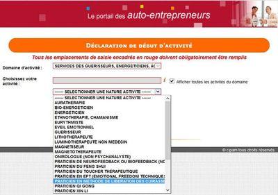 Copie d'écran exemples d'intitulés dans le domaine guérisseur dans le formulaire de déclaration d'activité auto entrepreneur