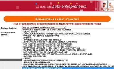 Copie d'écran je ne connais pas mon domaine dans le formulaire de déclaration d'activité sur le site de l'auto entrepreneur