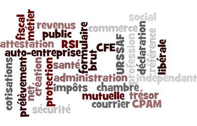 Auto entrepreneur la d claration de d but d 39 activit - Declaration auto entrepreneur chambre des metiers ...