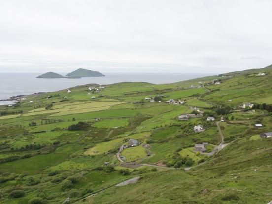Pâturages en bord de mer en Irlande