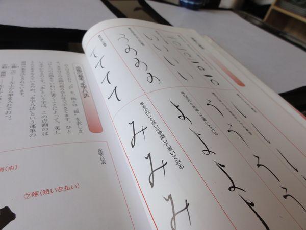 Livre de calligraphie en japonais