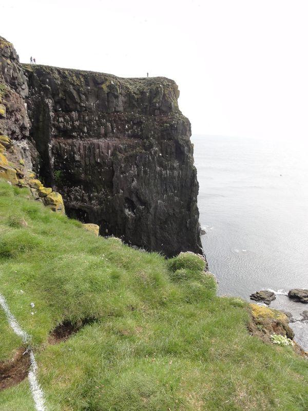 Falaises de Latrabjarg en Islande